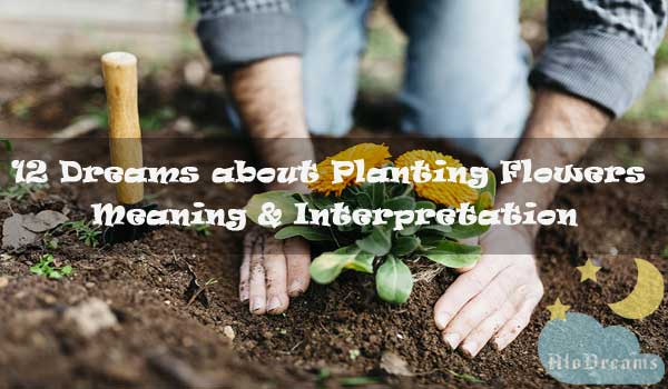 12 Dreams about Planting Flowers - Meaning & Interpretation