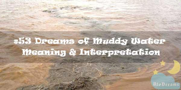 #53 Dreams of Muddy Water - Meaning & Interpretation