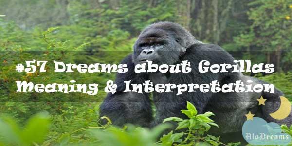 #57 Dreams about Gorillas : Meaning & Interpretation