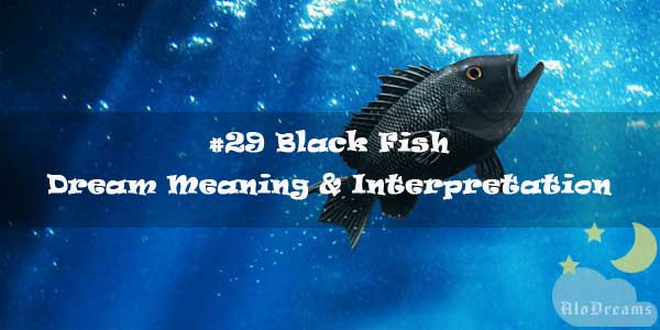 #29 Black Fish : Dream Meaning & Interpretation