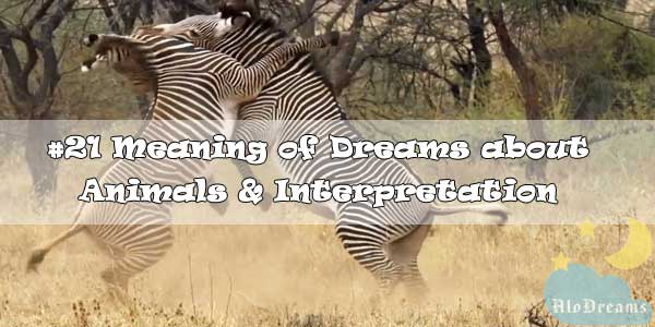 #21 Meaning of Dreams about Animals & Interpretation