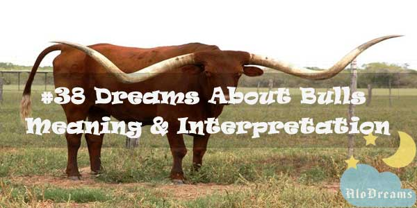 #38 Dreams About Bulls : Meaning & Interpretation