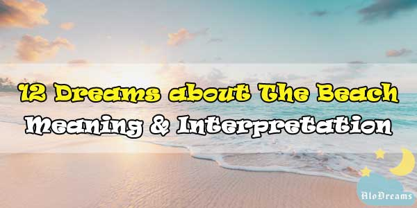 12 Dreams about The Beach , Meaning & Interpretation