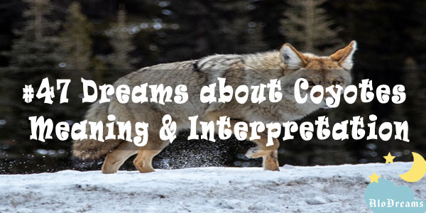 #47 Dreams about Coyotes : Meaning & Interpretation