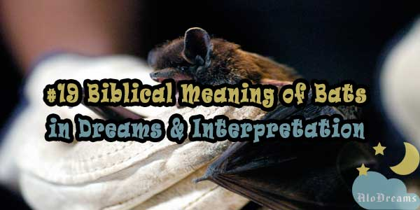 #19 Biblical Meaning of Bats in Dreams & Interpretation