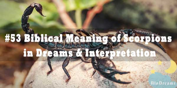 Biblical Meaning of Scorpions in Dreams & Interpretation