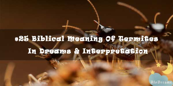 #25 Biblical Meaning Of Termites In Dreams & Interpretation