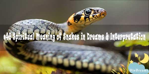 #48 Spiritual Meaning of Snakes in Dreams & Interpretation