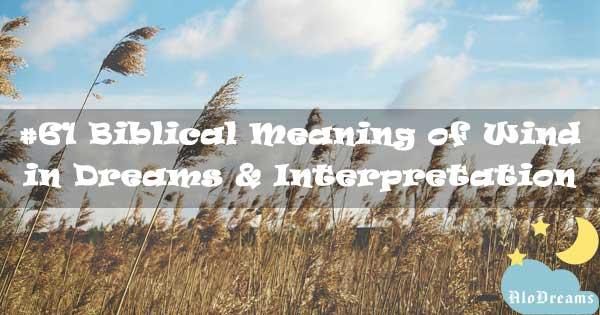 #61 Biblical Meaning of Wind in Dreams & Interpretation