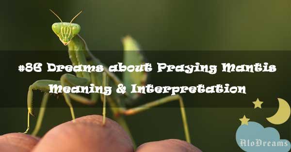 #86 Dreams about Praying Mantis - Meaning & Interpretation