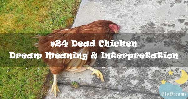 #24 Dead Chicken - Dream Meaning & Interpretation