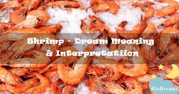 #34 Shrimp - Dream Meaning & Interpretatiion