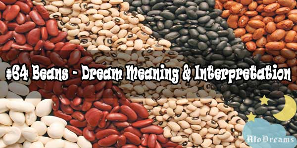 #64 Beans - Dream Meaning & Interpretation