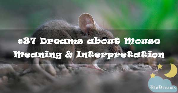 #37 Dreams about Mouse : Meaning & Interpretation