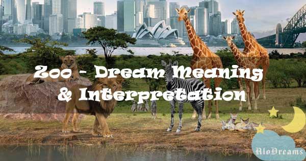 #29 Zoo - Dream Meaning & Interpretation
