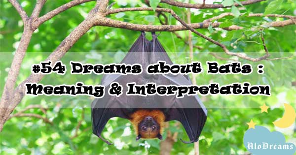 #54 Dreams about Bats : Meaning & Interpretation