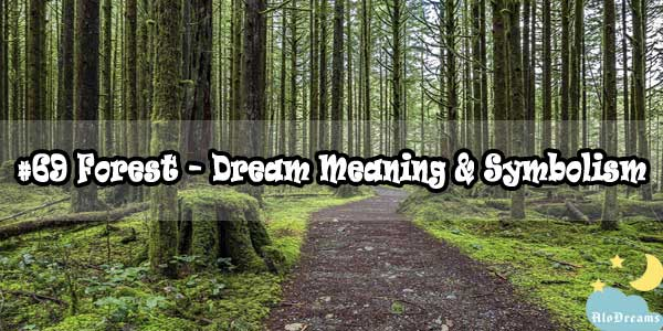 #69 Forest – Dream Meaning & Symbolism