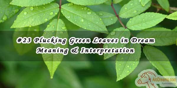 #23 Plucking Green Leaves in Dream - Meaning & Interpretation