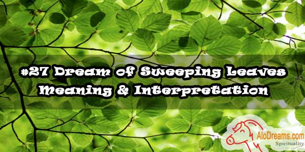 #27 Dream of Sweeping Leaves - Meaning & Interpretation