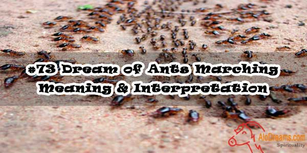#73 Dream of Ants Marching - Meaning & Interpretation