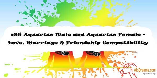 #95 Aquarius Male and Aquarius Female - Love, Marriage & Friendship Compatibility