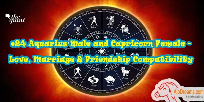 #24 Aquarius Male and Capricorn Female - Love, Marriage & Friendship Compatibility