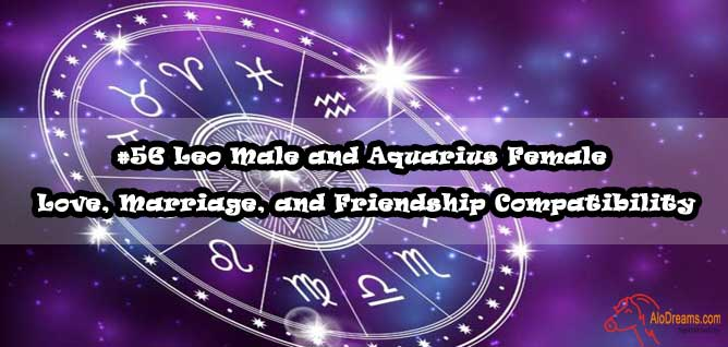 #56 Leo Male and Aquarius Female – Love, Marriage, and Friendship Compatibility
