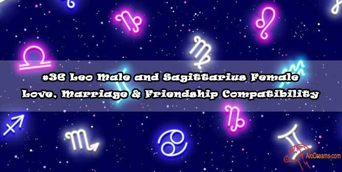 #36 Leo Male and Sagittarius Female - Love, Marriage & Friendship Compatibility