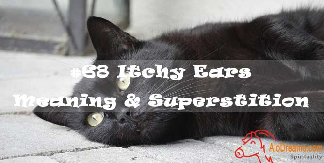 #68 Itchy Ears - Meaning & Superstition