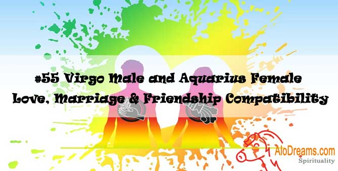 #55 Virgo Male and Aquarius Female - Love, Marriage & Friendship Compatibility