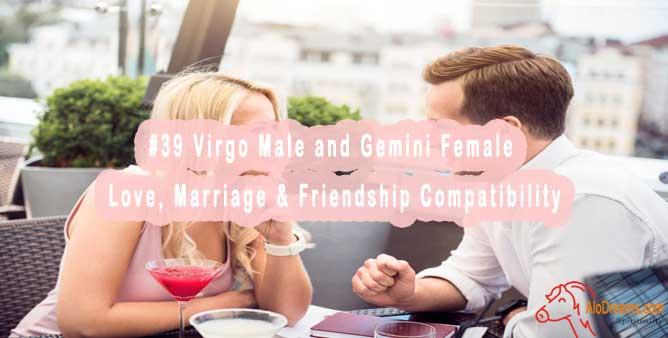 #39 Virgo Male and Gemini Female - Love, Marriage & Friendship Compatibility